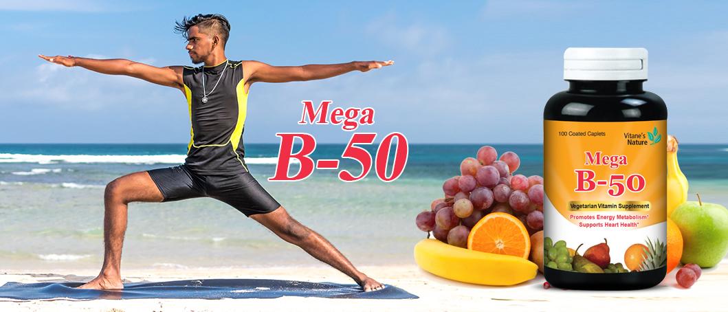 Mega B-50
